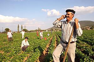 Binlerce ölüye 'çiftçi kredisi'