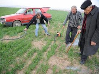 Tarla faresinden kurtulmayı Yozgatlı çiftçi başardıysa!