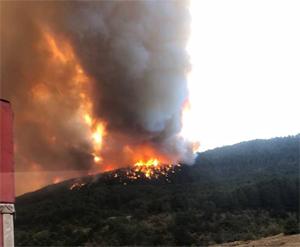 Kastamonu - Çankırı sınırında orman yangın
