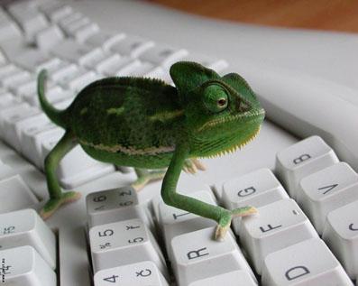 Bilgisayarda akıl almaz dolandırıcılık!
