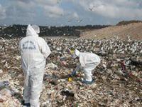 İstanbul'da çöp döküm sahasında vahşet