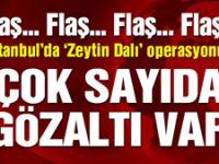 İstanbul'da da 'Zeytin Dalı' operasyonu