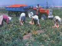 Çiftçiyi sırtından vuran kararname