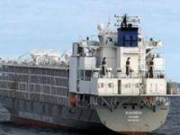 Korkunç iddia: İstanbul'da bekleyen bu gemide şarbonlu hayvanlar mı var?