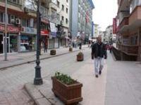 Cadde ve sokaklar lale ile donatıldı