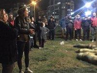 Ankara'daki köpek katliamını yapan 3 kişiye 10'ar yıl hapis