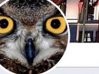 'Ankara Kuşu' da tutuklandı