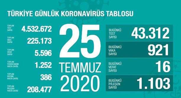 25-temmuz-2020-turkiye-corona-virus-rakamlari-resim-012.jpg