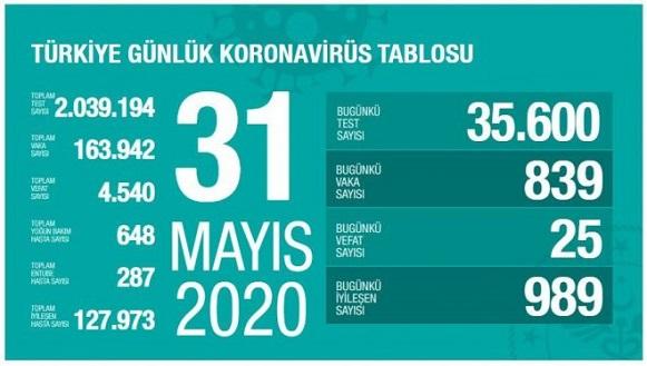 31-mayis-turkiye-corona-virus-rakamlari-resim-012.jpg